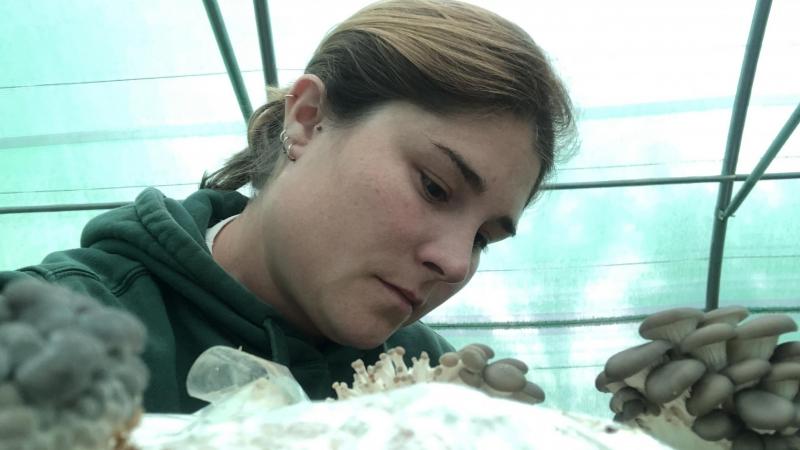 Nazaret, mujer rural de la provincia de Palencia, mira las setas cultivadas en su explotación.— CEDIDA