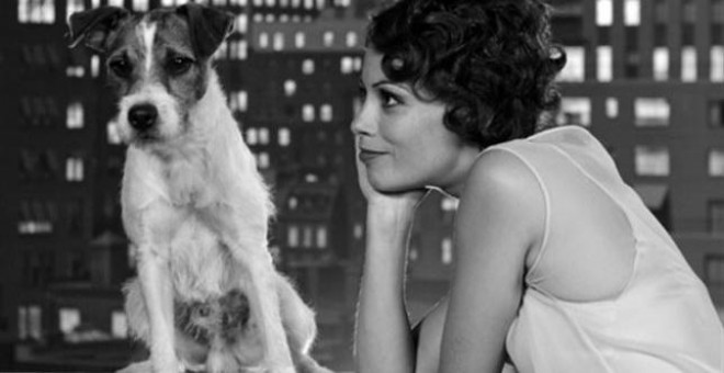 Uggie durante la película 'The Artist'.- EUROPA PRESS