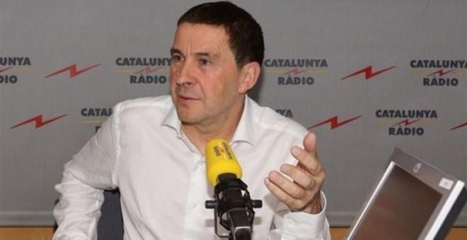 El secretario general de Sortu, Arnaldo Otegi