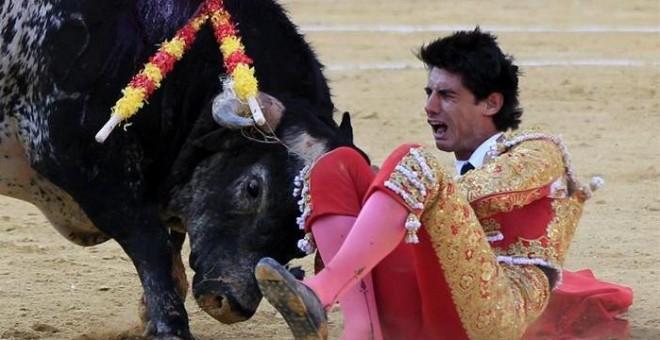 Pertama dalam 31 Tahun, Matador Spanyol Tewas Ditanduk Banteng