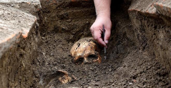 Un arqueólogo desentierra uno de los esqueletos hallados en las inmediaciones de una planta de carbón en Kostolac, Serbia. REUTERS/Djordje Kojadinovic