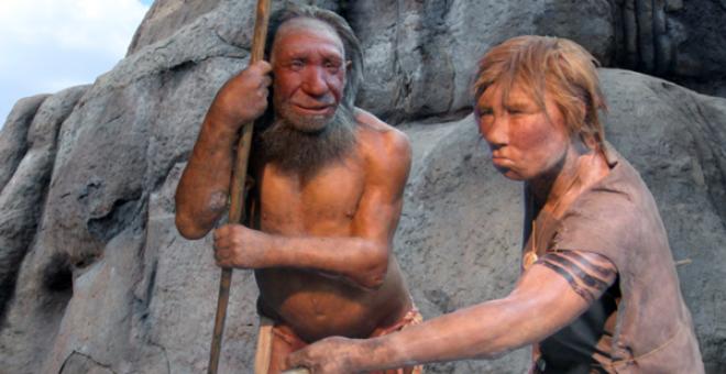 Se han encontrado mutaciones propias de los pelirrojos en el genoma de los neandertales, la especie anterior al humano moderno, que se extinguió hace unos 40.000 años y pobló zonas de Europa y Oriente Medio.Neandertal Museum