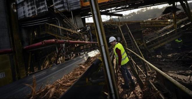 Un trabajador en la planta de biomasa de Ence en Pontevedra. AFP/Miguel Riopa