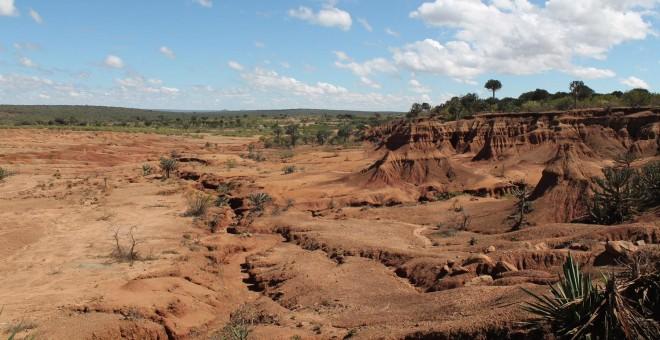 La sequía ha dejado inutilizados numerosos pastos en el valle del Rift (Pablo L. Orosa)