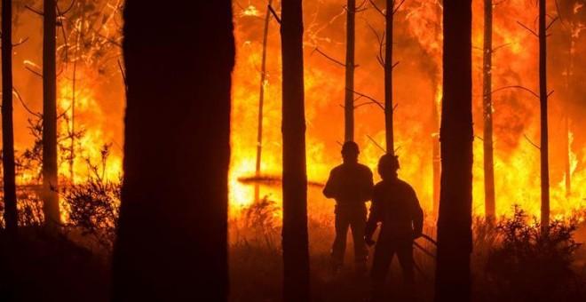 Un hombre lucha contra las llamas en un incendio forestal declarado en Vieira de Leiria en Marinha Grande (Portugal). / EFE