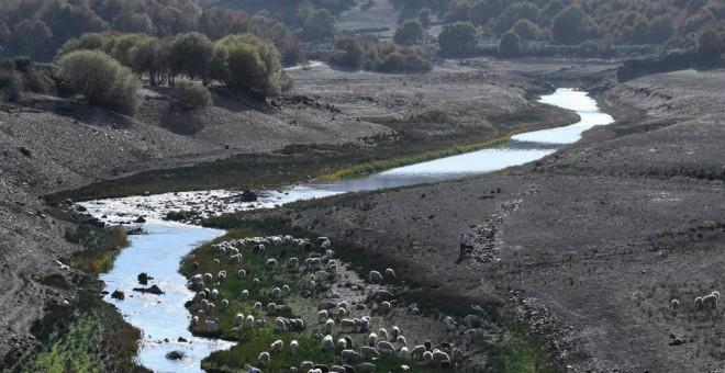 El 50% de las masas de agua en España están en mal estado. AFP