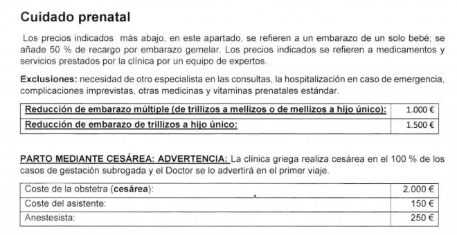 Captura de pantalla de 'los conceptos y precios ocasionales' de una agencia de 'gestación subrogada'.