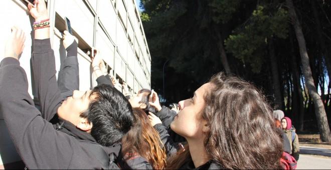 Un grupo de activistas se acerca a un camión que transporta cerdos a un matadero para darles de beber y tomar fotografías del momento./ Alejandro Tena