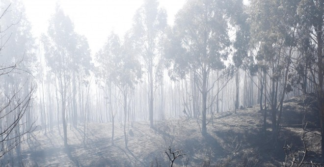 Incendio forestal en Ceuta / EUROPA PRESS