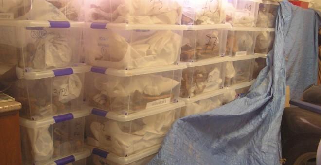 Los restos de 247 víctimas del franquismo están guardados en un almacén de la ARMH de Valladolid.- ARMH VALLADOLID