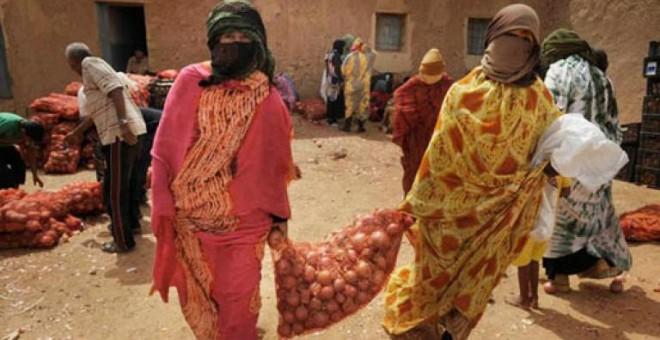 Marruecos está explotando de una manera intensiva el potencial agrario del Sáhara ocupado para exportar a Europa esa producción. / Comisión Europea