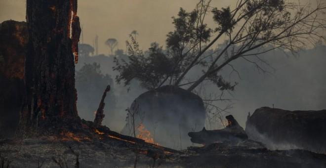 Un bosque quemado en Altamira, estado de Pará, Brasil, en la cuenca del Amazonas. - JOAO LAET / AFP