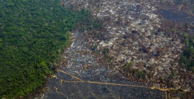 Vista aérea de la deforestación en la Reserva Biológica Nascentes da Serra do Cachimbo en Altamira, estado de Pará, Brasil. - JOAO LAET / AFP