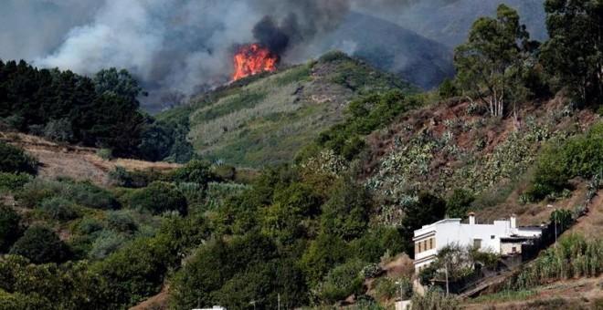 CaixaBank establece un plan de ayudas de 20 millones de euros para los afectados por el incendio