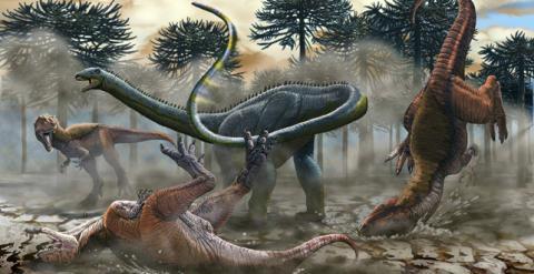 Descubierto En Argentina Un Dinosaurio De Cuello Largo Diario Publico ¿por qué un cuello de 10 metros? argentina un dinosaurio de cuello largo