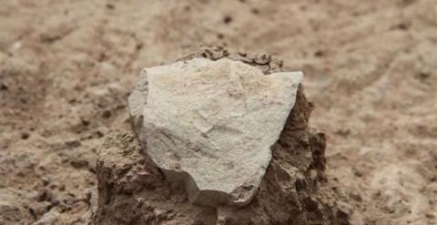 Homínidos de hace 3,3 millones de años usaron herramientas de piedra. /MPK-WTAP