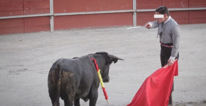 Imágenes de las clases prácticas en la escuela taurina de Pedrezuela, en Madrid. PACMA
