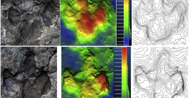 Análisis de las huellas del dinosaurio. EUROPA PRESS