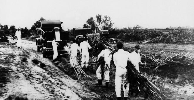 Los soldados estadounidenses retiran las cosechas y tierras contaminadas en Palomares.