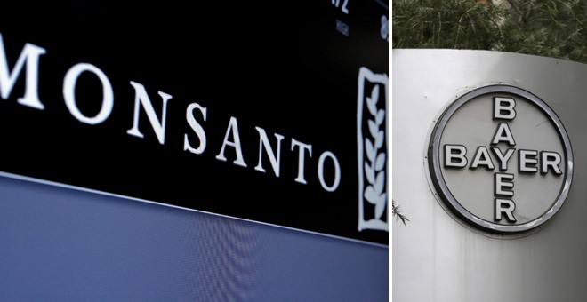 Los logos de Monsanto y de Bayer. REUTERS
