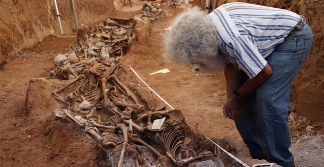 Exhumación de una fosa común en La Legua-Gumiel de Izán (Burgos).-  ARANZADI / ÓSCAR RODRÍGUEZ
