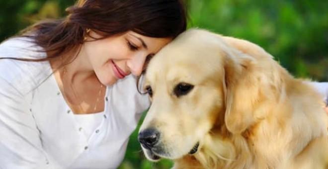 Cómo darle cariño a tu perro