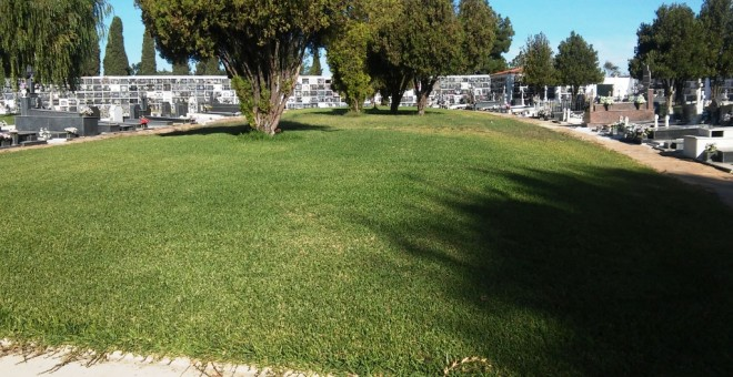 Zona de fosas en el cementerio de la Soledad