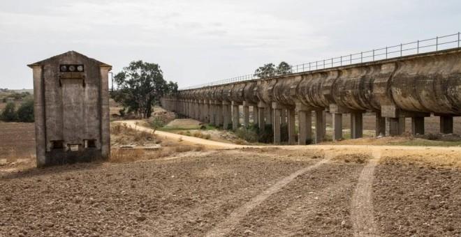 Imagen del canal