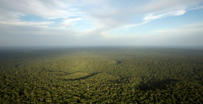 Selva amazónica en el estado de Amazonas. REUTERS / Bruno Kelly