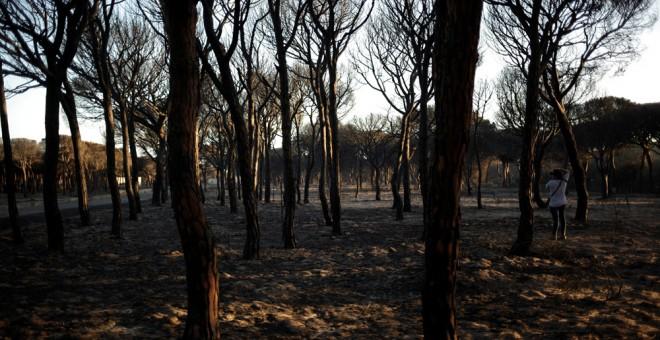 Un hombre toma fotos de la zona afectada por el fuego cerca de Doñana, en Matalascañas (Huelva). REUTERS/Jon Nazca