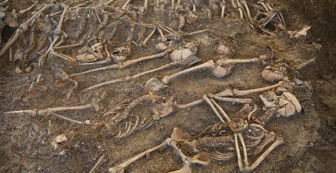 Restos hallados en la fosa de Málaga.