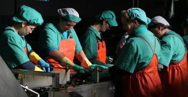 Mujeres trabajando / Europa Press