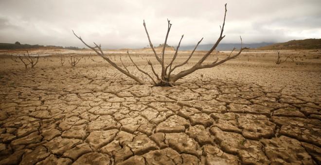 El embalse de Theewaterskloof, cerca de Ciudad del Cabo, completamente seco. REUTERS