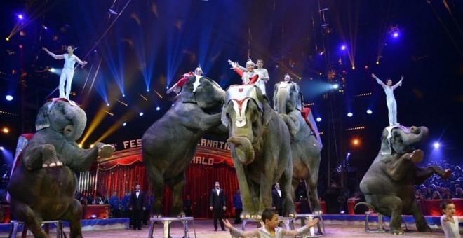 Un espectáculo con elefantes en un circo.