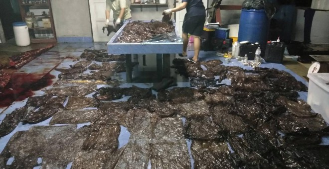 Imagen de la ballena muerta por haber tragado 80 bolsas de plástico. | Thailand's Department of Marine and Coastal Resources.