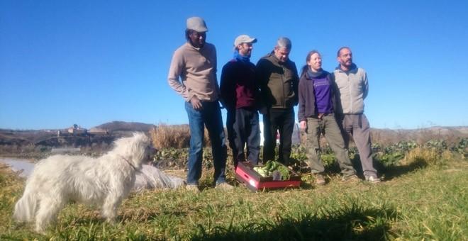 Agricultores de una finca ecológica en el Parque Agrario del Soto del Grillo, en Rivas Vaciamadrid. / PÚBLICO