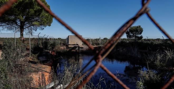 Balsa de riego ilegal construida cerca de algunos de los 77 pozos que la Confederación Hidrográfica del Guadalquivir (CHG) prevé cerrar. EFE/José Manuel Vidal