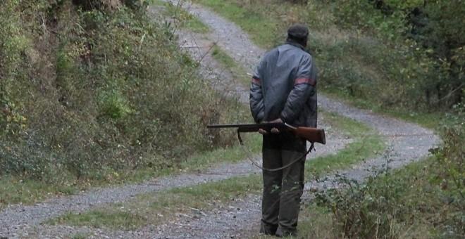 La Justicia tumba el blindaje del PP, Cs y PSOE de la caza en Castilla y León