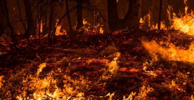 Incendio forestal próximo a la localidad cántabra de Aes. El número de incendios activos en Cantabria ha bajado a 17 y los puntos más preocupantes están en Penagos, Aes (Puente Viesgo), Bárcena Mayor (Los Tojos) y Cosío (Rionansa). A las 7.00 horas se in
