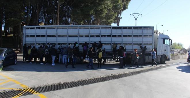 Un grupo de activistas animalistas recibe a un camión de cerdos en el matadero de Getafe./Alejandro Tena