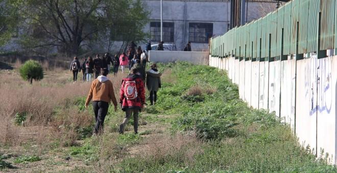 Varios activistas acuden a la parte posterior del matadero, donde se puede ver como los trabajadores descargan a los cerdos del camión./ Alejandro Tena