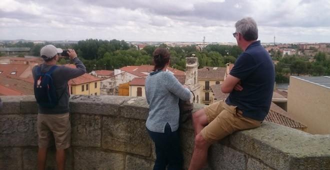 Turistas observan el nido de una cigüeña en Zamora. / H. M.