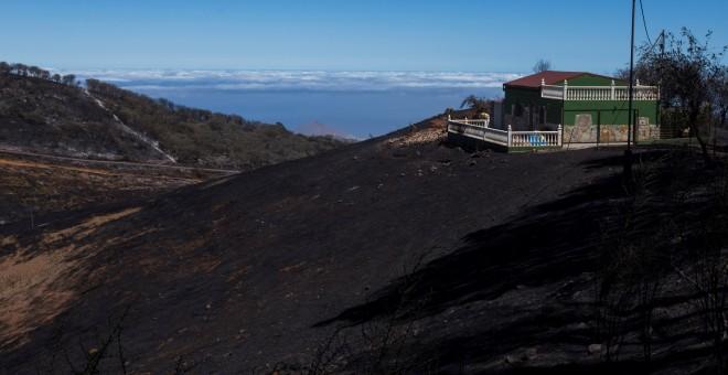 Así quedó el terreno afectado por los incendios de Gran Canaria que tuvieron lugar este mes de agosto. / Reuters