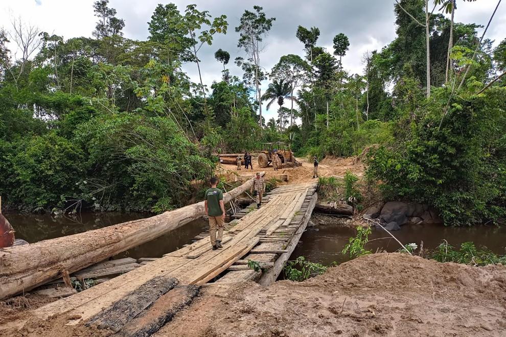 Operación Amazonia Viva, organizada por el estado brasileño de Pará. - ASCOM SEMAS PARÁ