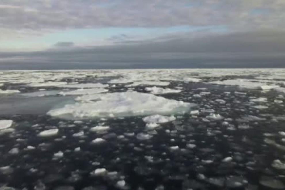 Casi todos los glaciares del mundo están perdiendo masa, según un estudio publicado en la revista científica Nature