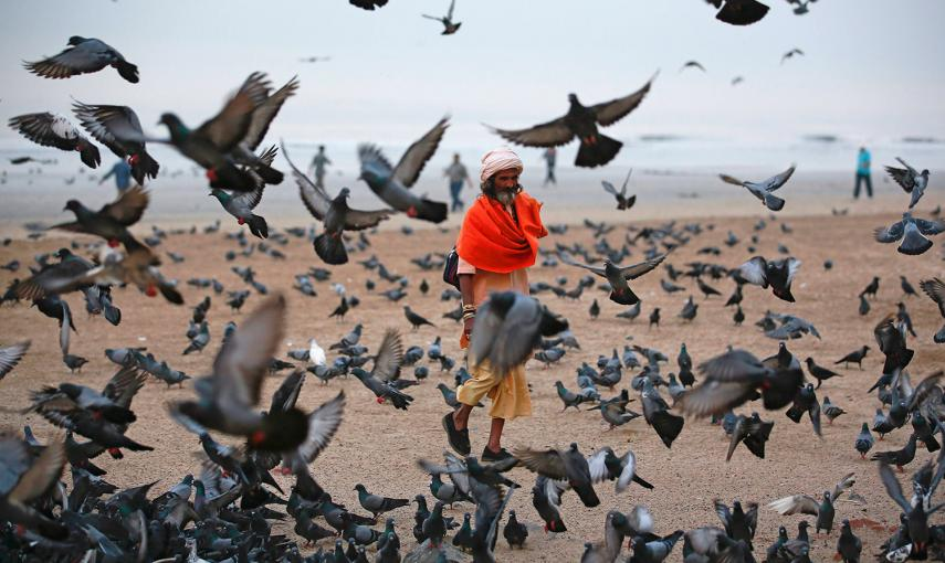 Un hindú pide limosna mientras camina entre los pájaros que vuelan en la playa, junto al mar Arábigo en Bombay. /DANISH SIDDIQUI (REUTERS)