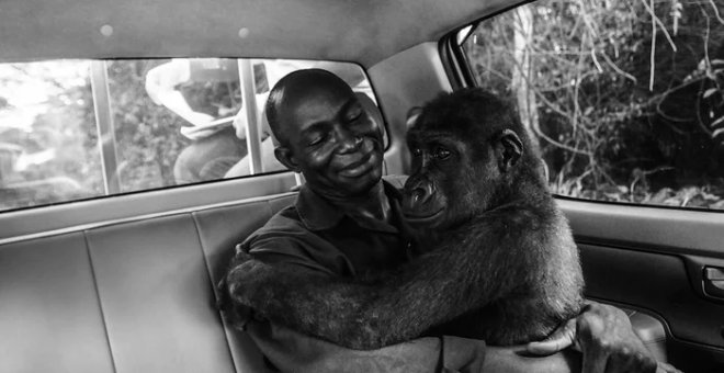 Pikin and Appolinaire, de Jo-Anne McArthur (Natural History Museum)