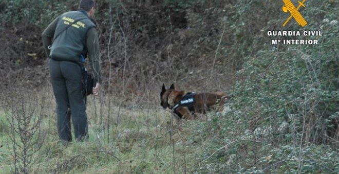 Agente de la Guardia Civil junto a un perro rastreando la zona . GUARDIA CIVIL