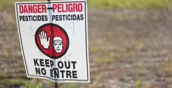 Pesticidas peligrosos.  AUSTIN VALLEY