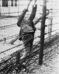 Campo de concentración de Mauthausen.- LOS ÚLTIMOS ESPAÑOLES DE MAUTHAUSEN